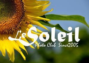 Le Soleil Gallery (それいゆギャラリー) - La Galerie Soleil - それいゆ 写真館