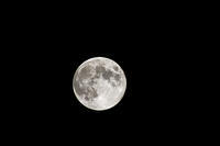 中秋の名月が満月に - デジカメ写真集