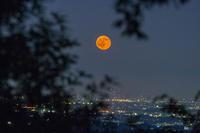 PhotoshopLightroomの効果(多峯主山の満月) - デジカメ写真集