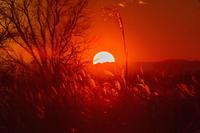 落日の輝き - デジカメ写真集