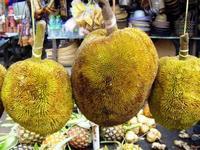 束子を食べませんか? - コタキナバル 旅行記・ブログ