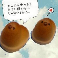 ひよことネコ - 松江市美容室 hair atelier bonet(ヘアアトリエボネット)大人女性のための美容室 。