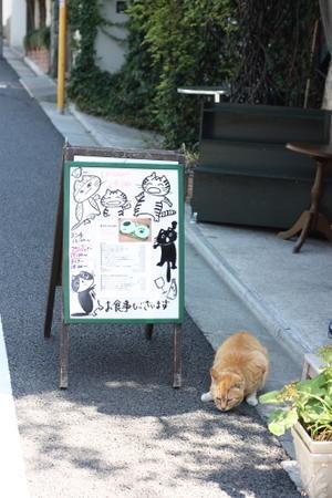 看板猫 - ねこさんぽ