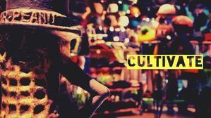 ブログ・・・ - cultivate