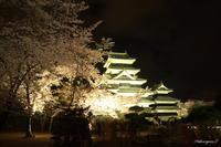 国宝松本城ライトアップ - 光の贈りもの