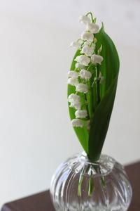 スズラン -Lily of the valley- - HAPPY to ...