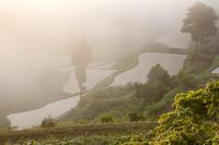 棚田の夜明け@松代 - デジカメ写真集