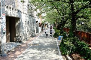 目黒川沿い1 - 非天然色東京画
