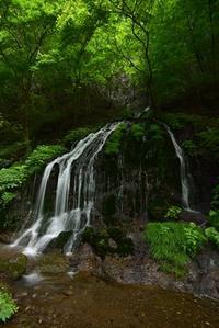 6月撮影会②白水の滝 - 楽しいことさがし3