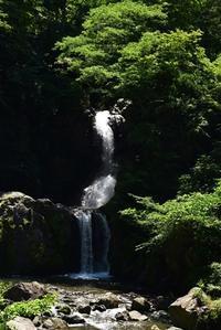 6月撮影会竜神の滝 - 楽しいことさがし3