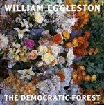 William Eggleston: The Democratic Forest - Satellite