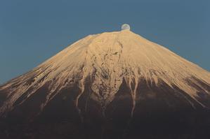 田貫湖からのパール富士2016 2月21日 - photograph album