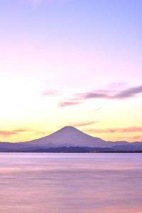 富士山 - お花びより