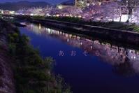 ふだん暮らしの桜風景 - あ お そ ら 写 真 社