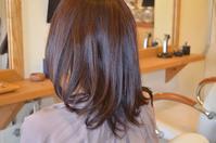 なりたい髪型になる方法 - 館林の美容室~一人だから誰にも気を使わないプライベートな空間~髪を傷ませたくないあなたの美容室 パーセプションのウェブログ