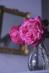 春準備 新しいベッド - 赤煉瓦洋館の雅茶子