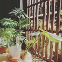 今日の奈良井宿。9月3日。 - Cafe 風花<木曽・奈良井宿>