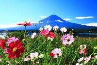28年9月の富士(3-6) - 富士への散歩道 ~撮影記~