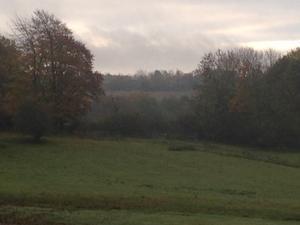 散歩中の風景 - Scenery こころの風景