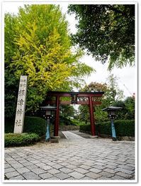 谷根千散歩その2根津神社 - Stay Green