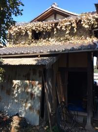 FUKUKOTOアーカイブシリーズ(11)「3年間を振り返って。納屋のリノベ始まり」編 - ドライフラワーギャラリー⁂ふくことカフェ