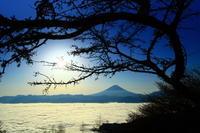 28年11月の富士(5-5) - 富士への散歩道 ~撮影記~
