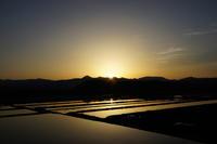 160430-0509 秋田 #3 子吉川 サクラマス 61cm - river trekker