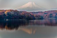 晩秋の狭山湖 - デジカメ写真集