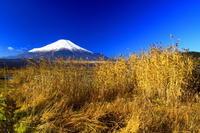 28年12月の富士(3-6) - 富士への散歩道 ~撮影記~