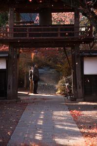 晩秋の川越 - デジカメ写真集