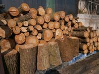 薪の調達 - 意外に忙しい田舎生活「 陶芸工房Satoh.」より 妻として