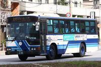 (2016.12) 沖縄バス・245 - バスを求めて…