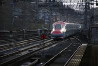 藤田八束の鉄道写真@日馬富士の対応と貴乃花の対応、正しいのか・・・いずれが正しい - 藤田八束の日記