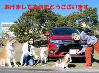 本年もよろしくお願いいたしますm(__)m - もももの部屋(怖がりで攻撃性の高い秋田犬のタイガ、老犬雑種のベスの共同生活&保護活動の記録です・・・時々お空のモカも登場!)