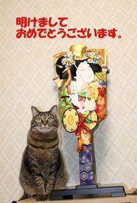 明けましておめでとうございます - 長老猫とマミーの徒然日記