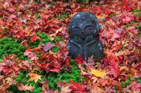 京都の紅葉2016 晩秋の一乗寺界隈(圓光寺・詩仙堂) - 花景色-K.W.C. PhotoBlog