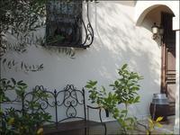 お庭の模様替え - L'Ambiance du Midi