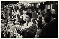 昭和のお正月-4 - Hare's Photolog