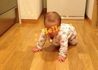 3歳と215日/生後272日 - ぺやんぐのブログ