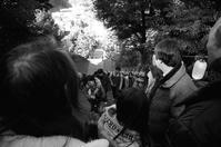 初暦月 寫誌 ④初詣、みんなで登れば… - le fotografie di digit@l