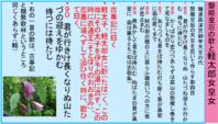 192人麻呂の編集・軽太郎女皇女の歌 - 地図を楽しむ・古代史の謎