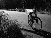 自転車 - 空を見上げて 〜Copy of memory〜