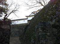 そして、国宝彦根城 - すみません、取り乱しました。