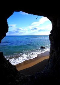 ひみつ海岸 - ぼんぼんトントン 写真
