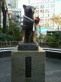 2017年スタート!卒園記念品に傘はいかがですか? - 渋谷の傘屋 仲屋商店のブログ