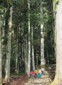やっぱり年始めは鳳来寺山へ - お山暮らし