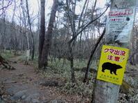 山梨そぞろ歩き:吐竜の滝 - 日本庭園的生活