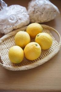 青春のレモンはちみつ漬け(パン・スイーツ部門) - The Lynne's MealtimesⅡ