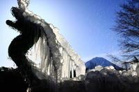 29年1月の富士(10)樹氷まつり - 富士への散歩道 ~撮影記~