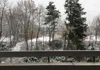 雪! - 飲食日和 memo